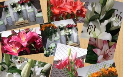 In de prijzen bij Najaarsbloemenshow IGH